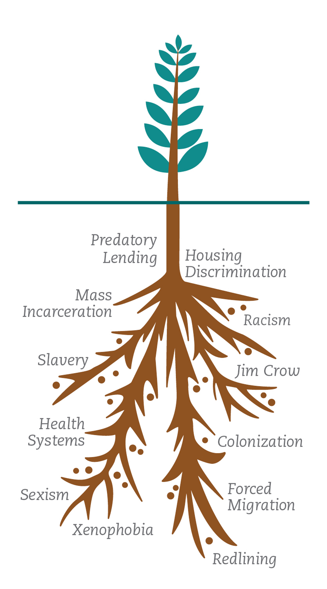 graphic of a tree with roots and roots are inequities