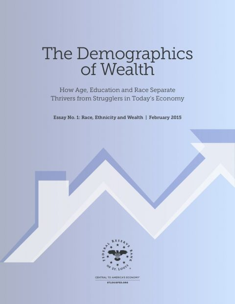 thumbnail of Demographics_Wealth_2015_Partner